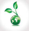 green earth with leaves growing - certified eco-stager
