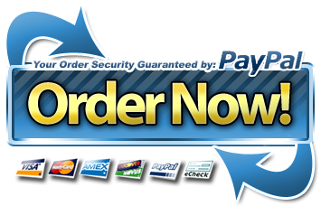 paypal secure order now button