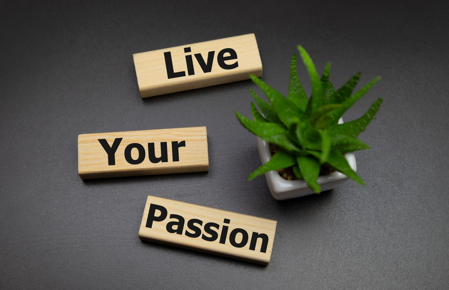 live your passion home staging